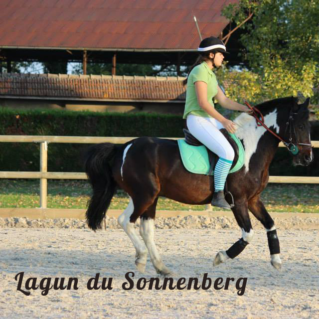 PONY GAMES Lagun