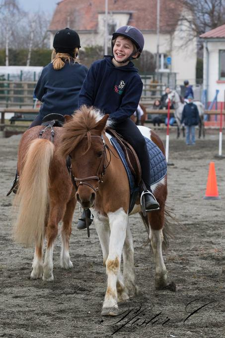 PONY GAMES pony games2