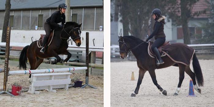 Les jeunes poneys dihlma obstacle dressage